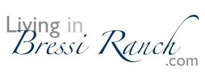 #1 BRESSI RANCH REAL ESTATE & Lifestyle Website by REALTOR